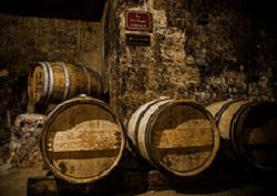 Vins AOC de Bugey